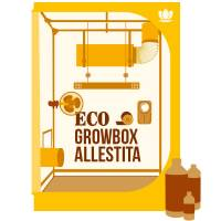 ECO Grow Box Allestita LED APOLLO 60x60x140 + OMAGGIO