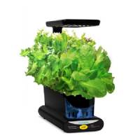 Aerogarden Miracle-Gro Led Mini Kit con semi 24x13x38