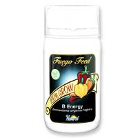 Fuego Feed - B Energy - 250ml