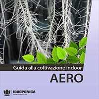 guida coltivazione indoor in aeroponica