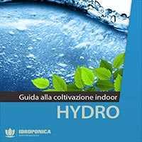 guida coltivazione indoor in idroponica