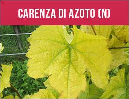 Carenza Azoto, carenze piante