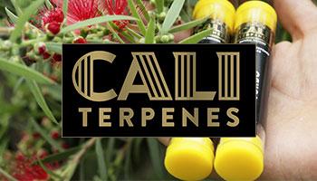 Cali Terpenes Italia