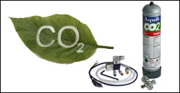 Integrazione CO2