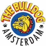 Linea The Bulldog Amsterdam
