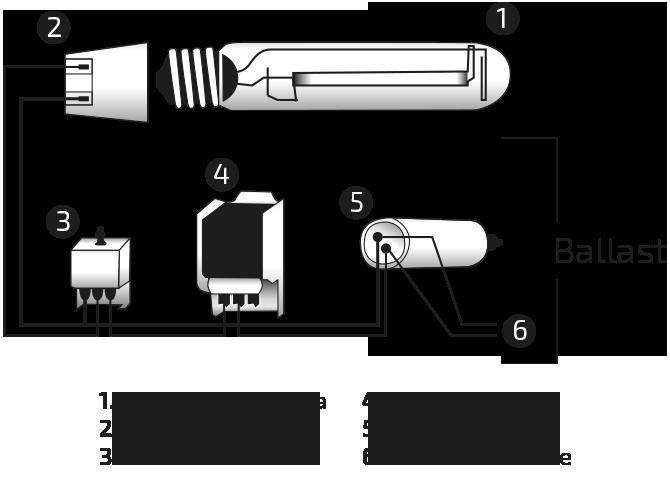 Schema Collegamento Lampada Vapori Di Sodio : Cenni su lampade hps mh ed envirolite di da