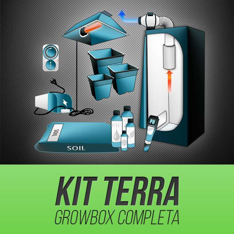 Kit Grow Box Terra
