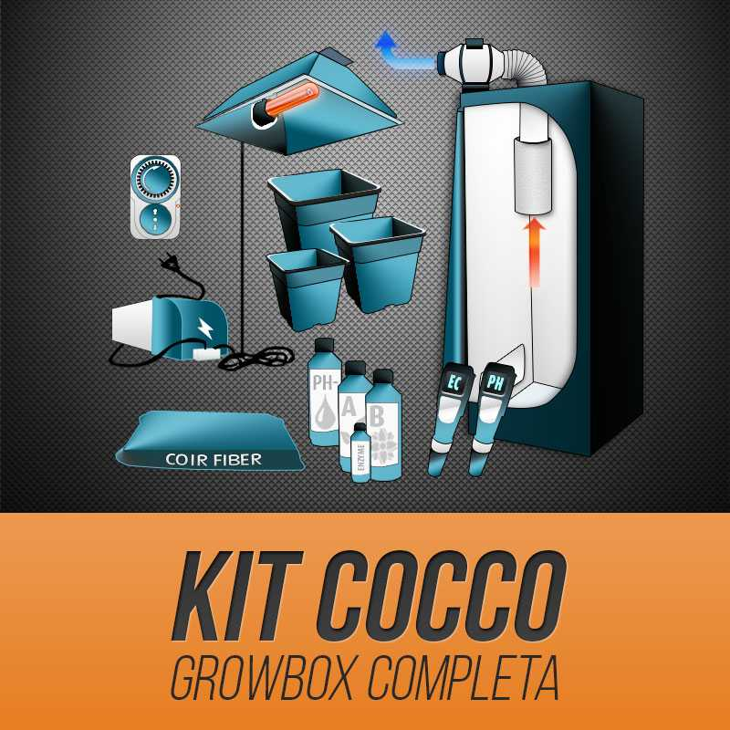 Kit Grow Box Cocco