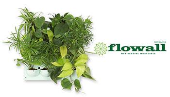 Flowall
