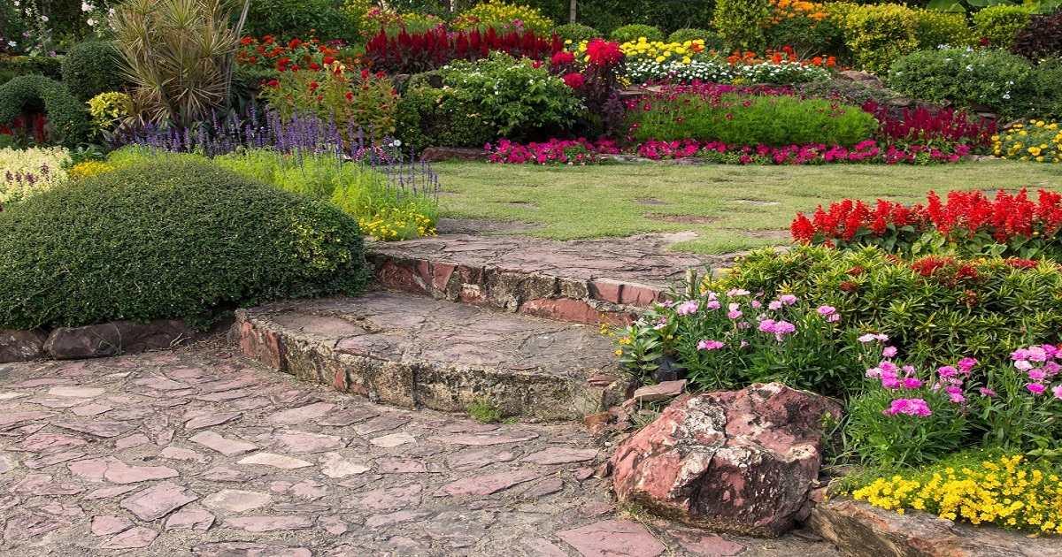 caratteristiche healing garden