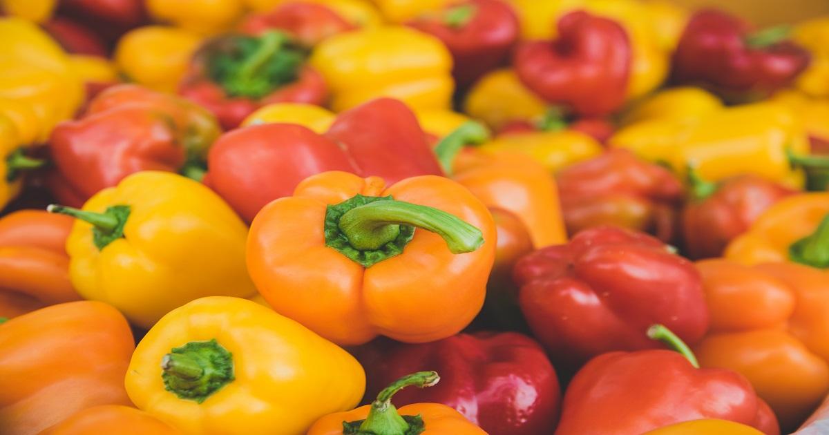 come coltivare i peperoni dai semi