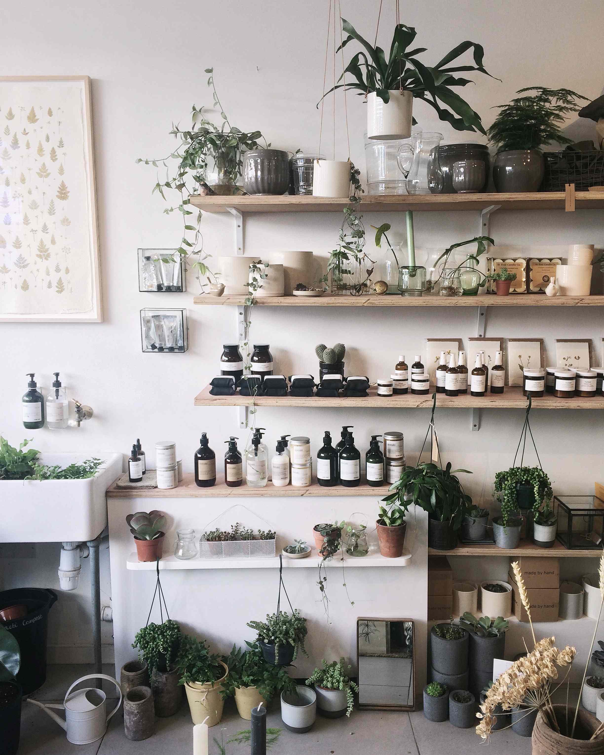 come fare in casa i concimi per le piante