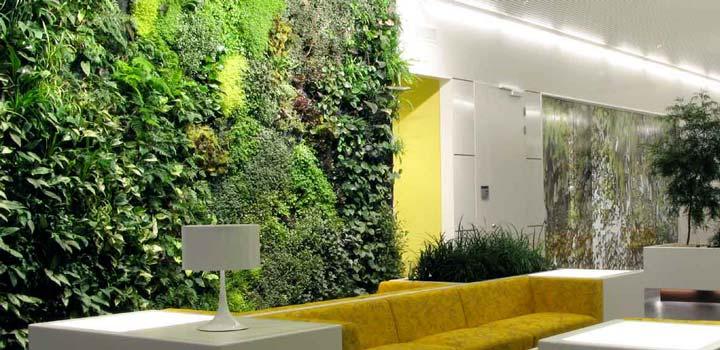 giardino idroponico cos'è e come funziona