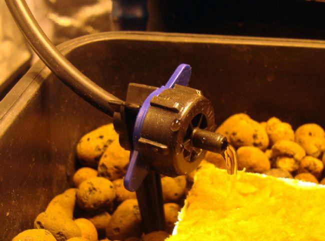 11. Alloggiamento dei gocciolatoi