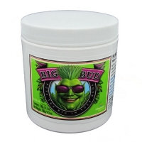 Adv Nutrients - Big Bud in polvere