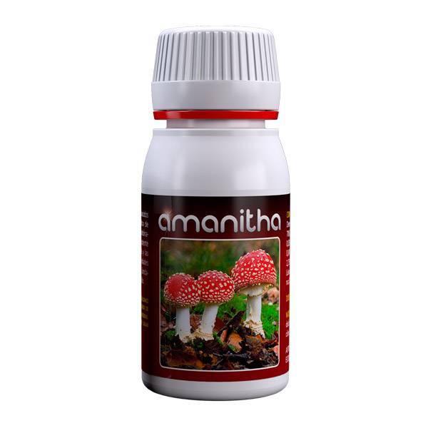 Agrobacterias - Amanitha