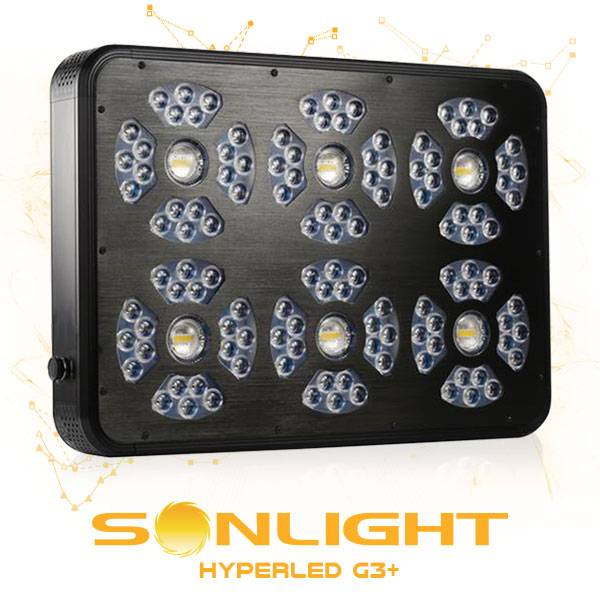 Sonlight G3 810W