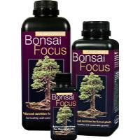 Bonsai Focus 1L - Growth Technology