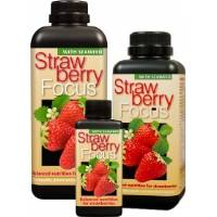 Strawberry Focus 300ml - Growth Technology