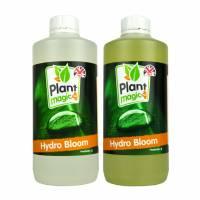 Plant Magic - Hydro Bloom 1L A+B