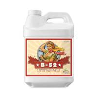 Advanced Nutrients - B-52 - 250ML