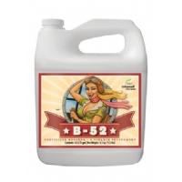 Advanced Nutrients - B-52 - 5L