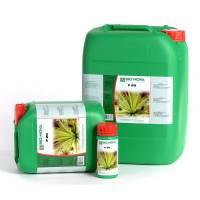 Bionova - P 20% Fosforo 20L