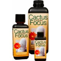 Cactus Focus 300ml - Growth Technology