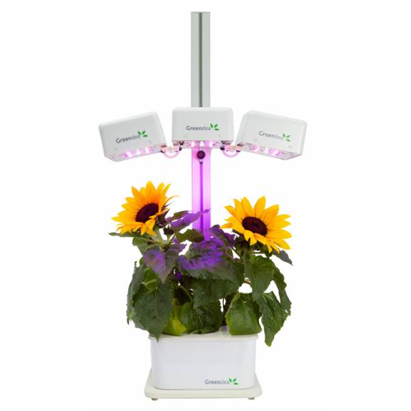 Hydroponic smart garden greendea sistema a led 3 for Lampade per piante