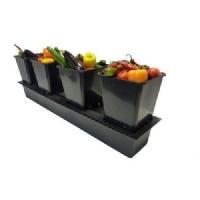 QuadGrow Slim Nutriculture Con ATU - Sistema Idroponico Passivo