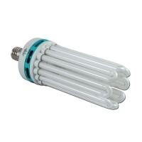 Lampada Compatta Fluorescente CFL 250W Bianca - 6400°K Crescita