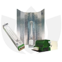Kit Illuminazione Indoor Easy - Philips Son-t Agro 400w