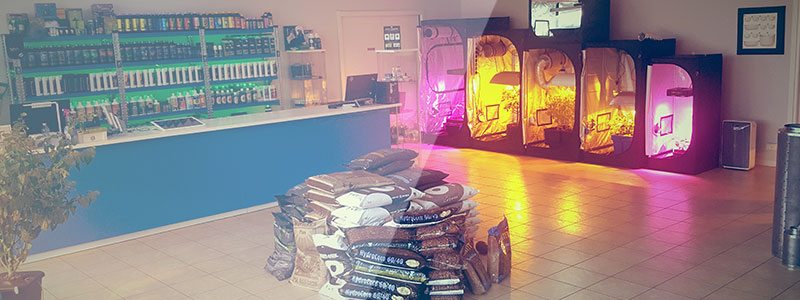 Grow Shop di Mestre