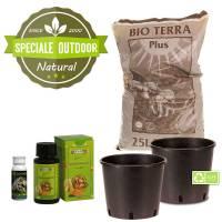 Speciale Outdoor: Kit Autofiorenti Bio (2 piante)