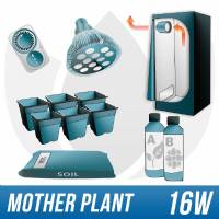Grow Kit per Piante Madri