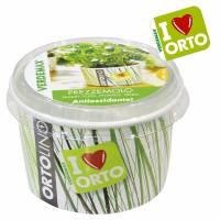 Kit Coltivazione - Ortolino Prezzemolo di Verdemax
