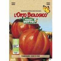 Semi biologici di Pomodoro Cuore di bue