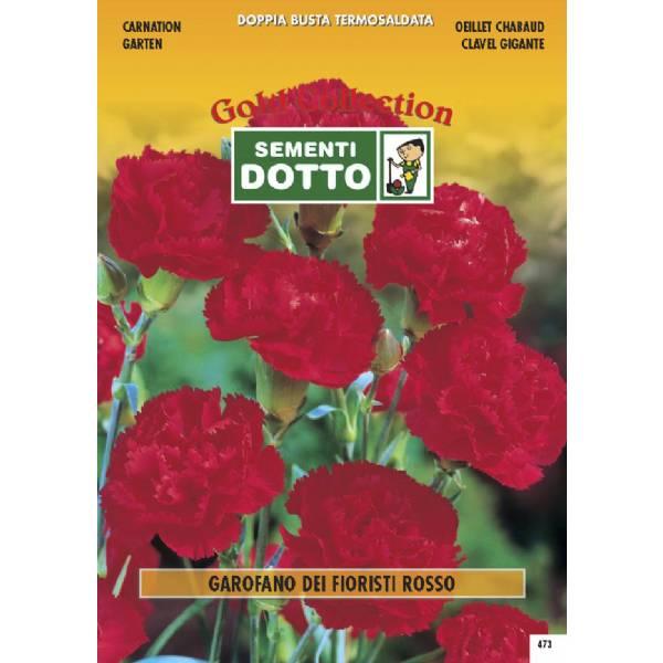 Linea fiori gold garofano dei fioristi rosso h cm 60 for Libri per fioristi