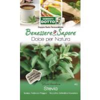 Semi di Stevia - Sementi Dotto